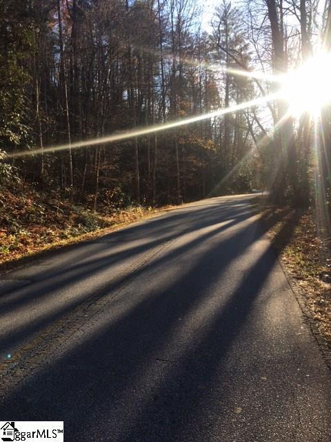 Gap Creek Road, Marietta, SC 29611 (#1358539) :: The Toates Team
