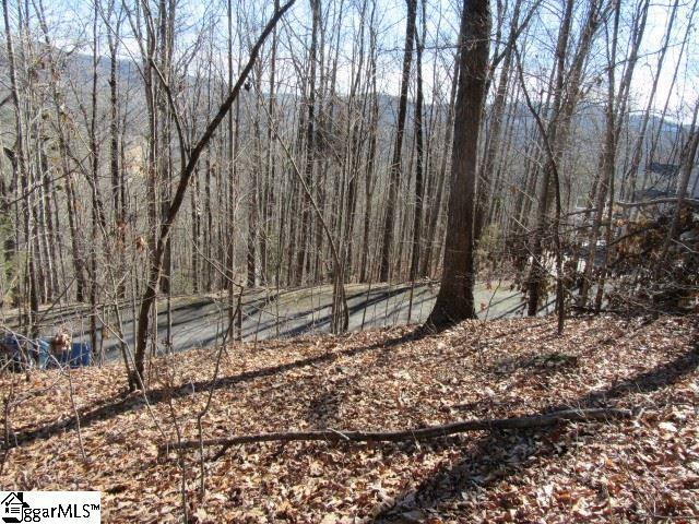 813 Whispering Falls Drive, Pickens, SC 29671 (#1360629) :: Mossy Oak Properties Land and Luxury