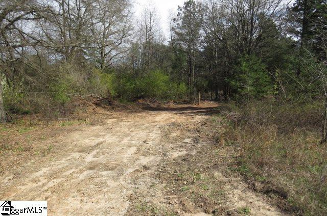 Reece Mill Road, Pickens, SC 29671 (#1363699) :: The Toates Team