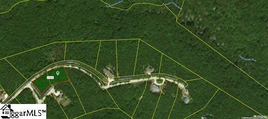 6 Gunflint Way, Landrum, SC 29356 (#1364129) :: Coldwell Banker Caine