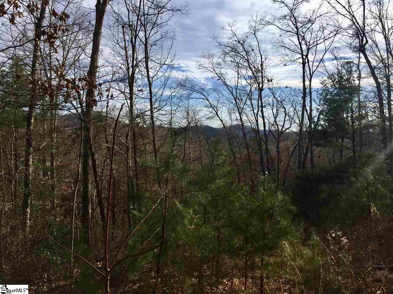 11 Misty Hollow Trail - Photo 1