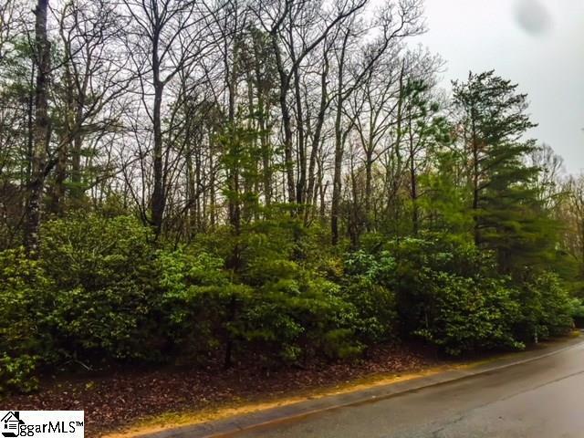 6 Sevenbark Lane, Cleveland, SC 29635 (#1366207) :: Coldwell Banker Caine