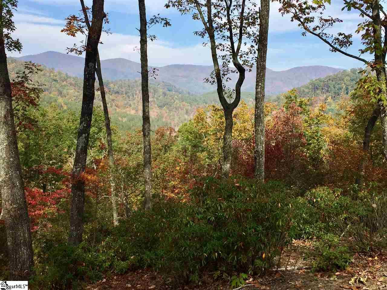230 Wood Violet Trail - Photo 1
