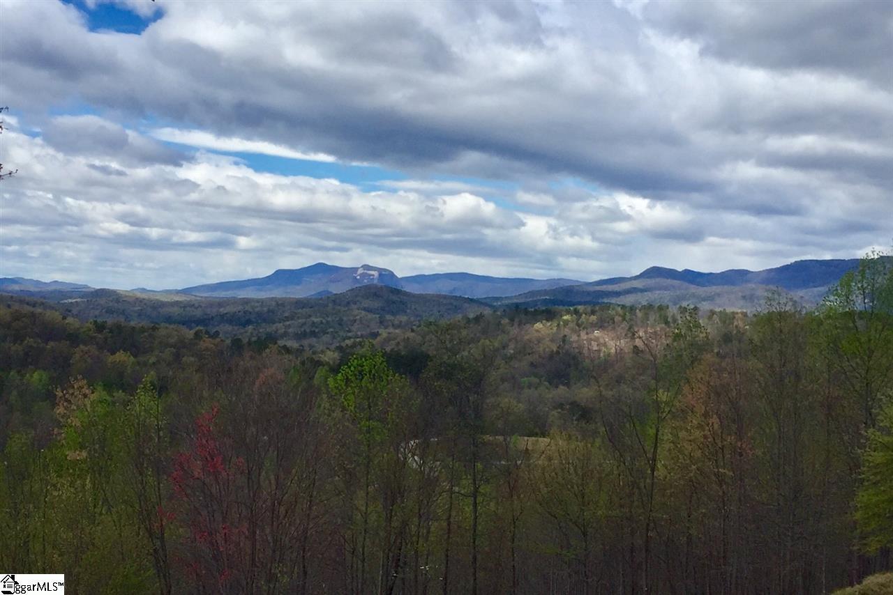 Blue Bonnet Trail - Photo 1