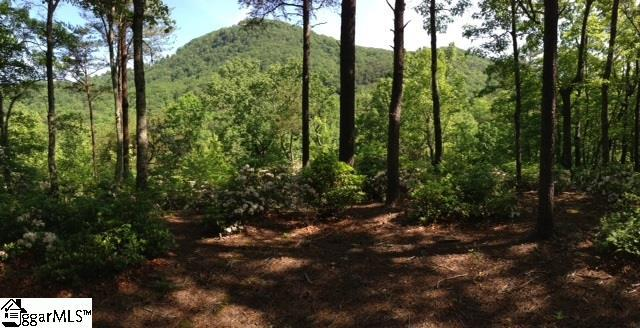 Halfnoon Trail, Travelers Rest, SC 29690 (#1374796) :: The Toates Team