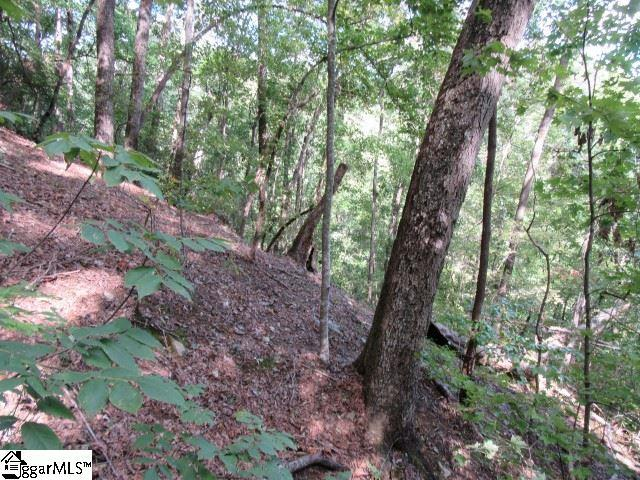 832 Whispering Falls Drive, Pickens, SC 29671 (#1378723) :: Mossy Oak Properties Land and Luxury