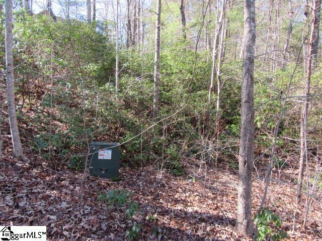 103 Rock Ridge, Pickens, SC 29671 (#1379055) :: Mossy Oak Properties Land and Luxury