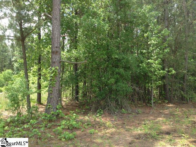 00 Sandalwood Drive, Easley, SC 29640 (#1379073) :: Connie Rice and Partners