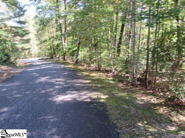 305 Whispering Falls Drive, Pickens, SC 29671 (#1379333) :: The Haro Group of Keller Williams