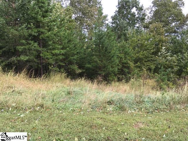 11 Green Wing Teal Way, Marietta, SC 29661 (#1379705) :: Hamilton & Co. of Keller Williams Greenville Upstate