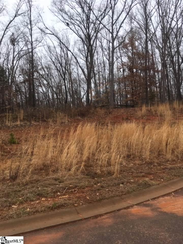 255 Audubon Acres Drive - Photo 1