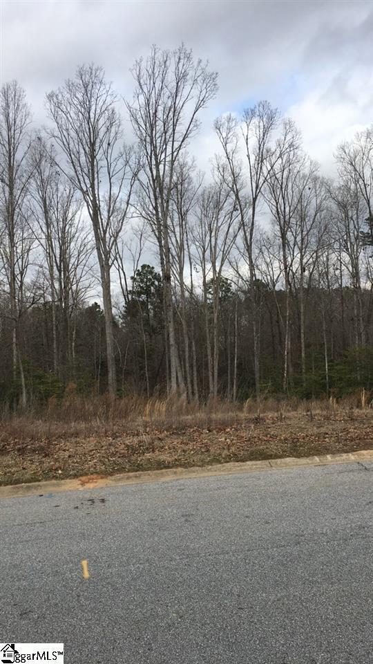 36 Carolina Oaks Drive, Fountain Inn, SC 29644 (#1385291) :: J. Michael Manley Team