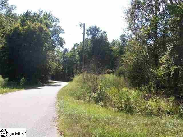 Rabon Creek, Waterloo, SC 29384 (#1393521) :: J. Michael Manley Team