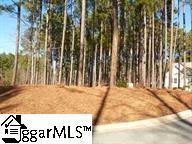 305 Meadow Tree Court, Travelers Rest, SC 29690 (#1396674) :: Hamilton & Co. of Keller Williams Greenville Upstate