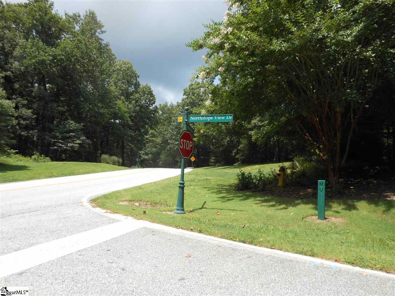 Plumley Summit Road - Photo 1
