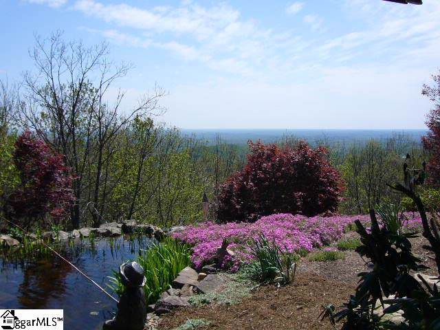 48 Angleblade Road, Landrum, SC 29356 (#1401964) :: Connie Rice and Partners