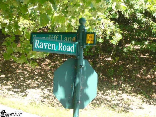 Raven Road, Landrum, SC 29356 (#1402009) :: J. Michael Manley Team