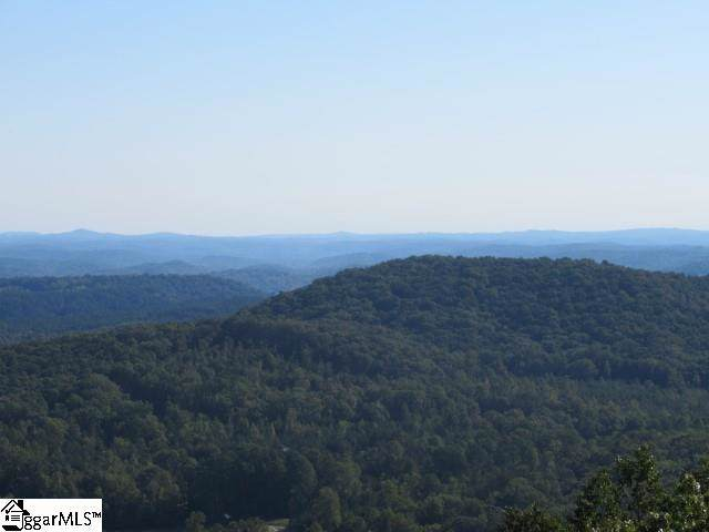 203 Dreugh Evins Drive, Pickens, SC 29671 (#1402590) :: Mossy Oak Properties Land and Luxury