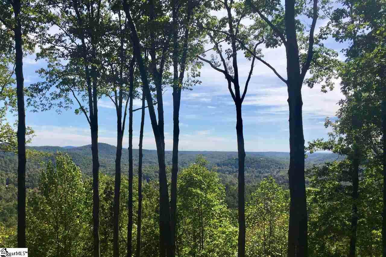 24 Foggy Ridge Way - Photo 1