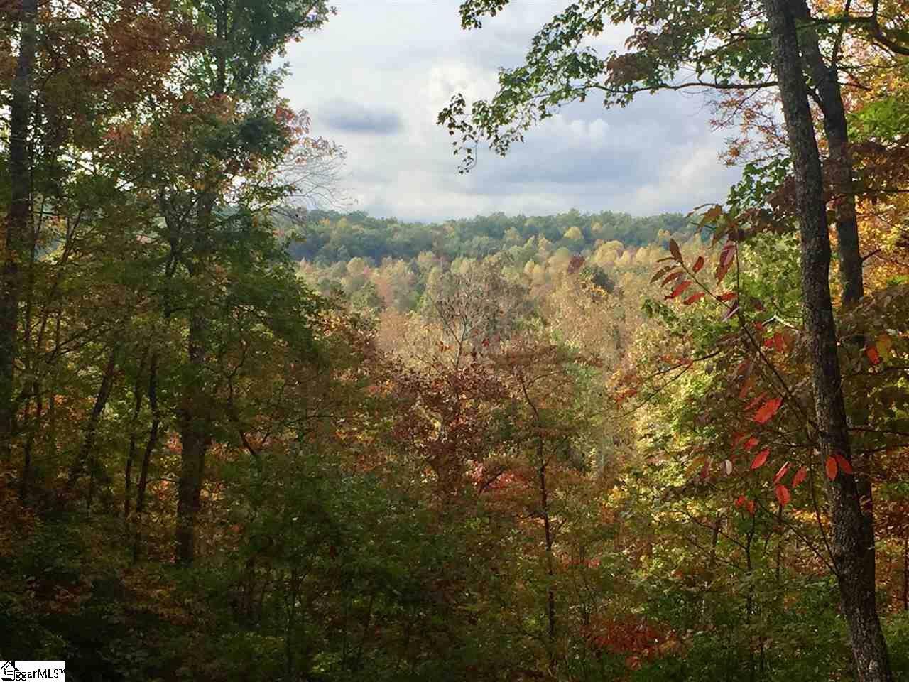620 Tree Haven Trail - Photo 1