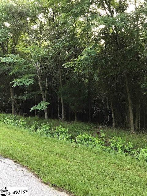 0 Indian Ridge Drive, Laurens, SC 29360 (#1408681) :: Parker Group