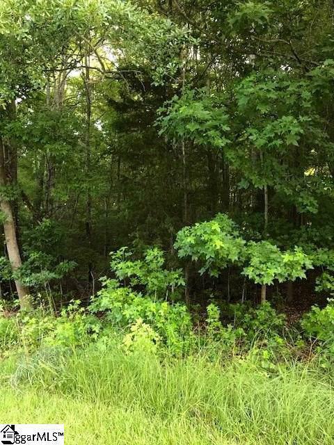 111 Indian Ridge Drive, Laurens, SC 29360 (#1408686) :: Parker Group