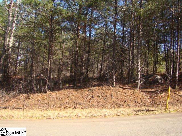 22 Sawblade Ridge, Marietta, SC 29661 (#1410398) :: The Toates Team