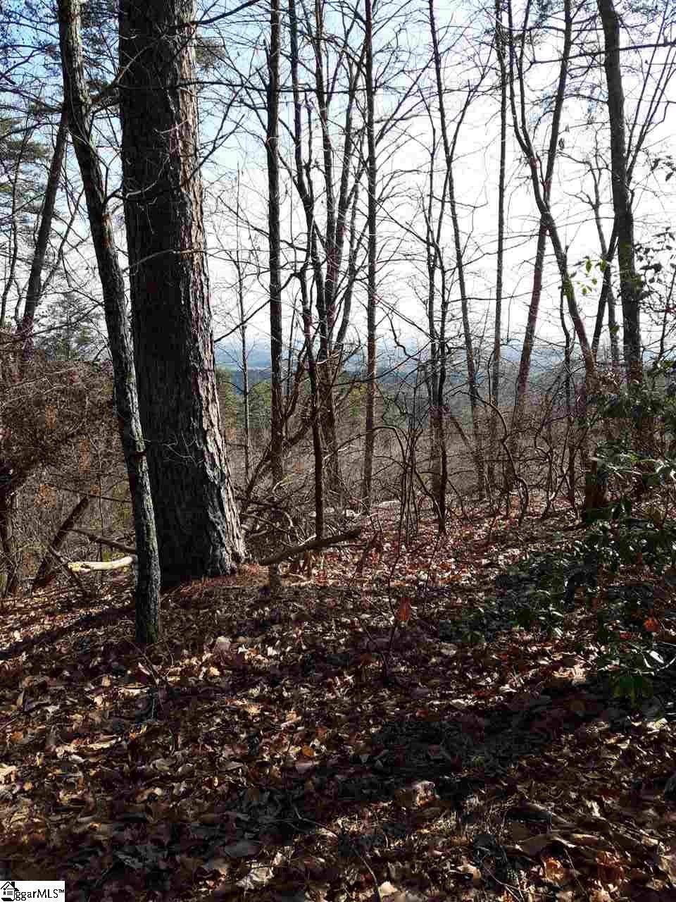 284 Jocassee Ridge Way - Photo 1