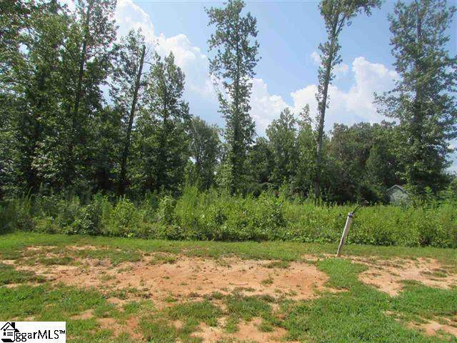 259 Audubon Acres Drive, Easley, SC 29642 (#1410909) :: Connie Rice and Partners