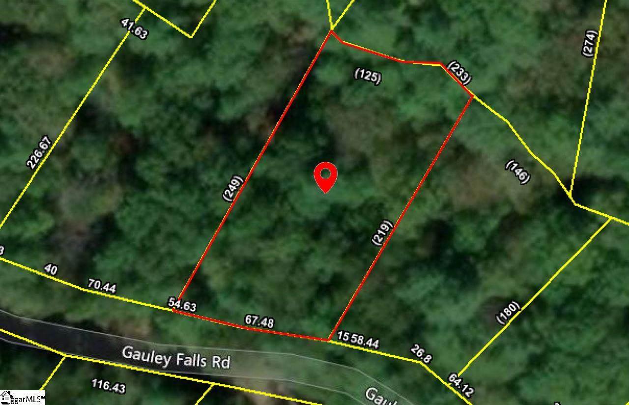 322 Gauley Falls Road - Photo 1