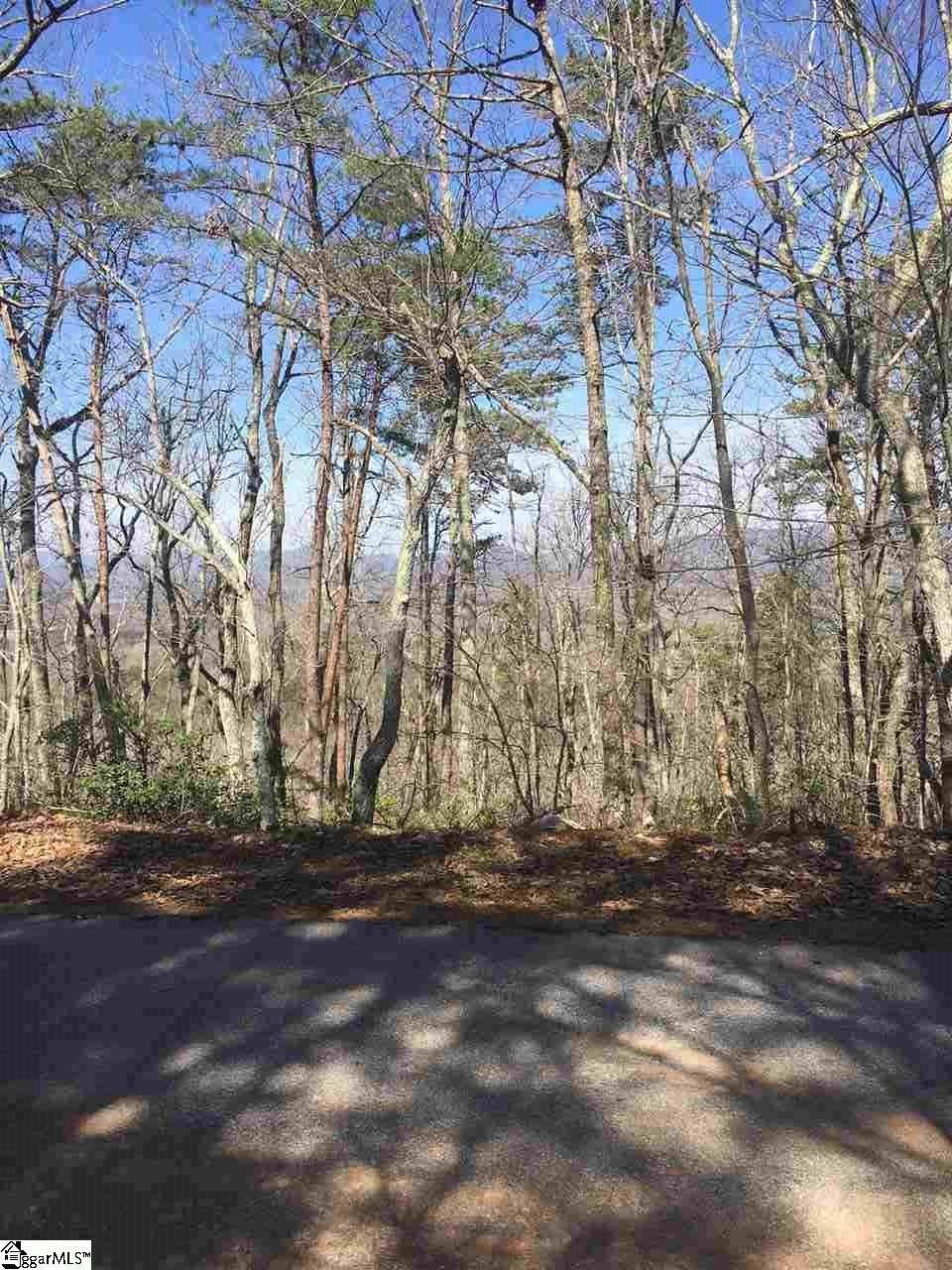 34021 Packs Mountain Ridge Road - Photo 1