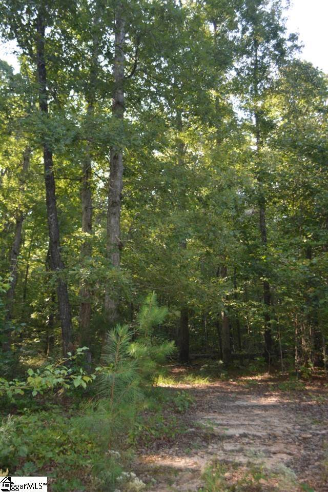 0 Pleasant Hill Road, Landrum, SC 29356 (#1412563) :: Connie Rice and Partners