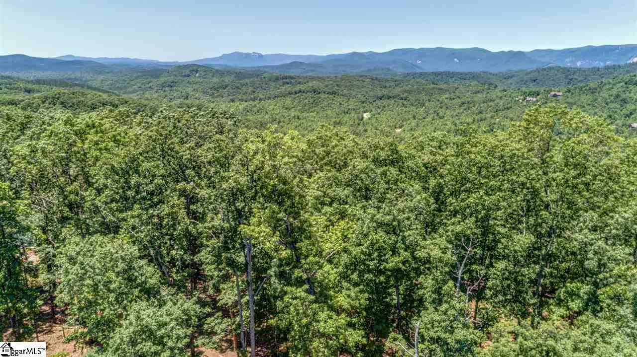 146 Cherokee Rose Trail - Photo 1