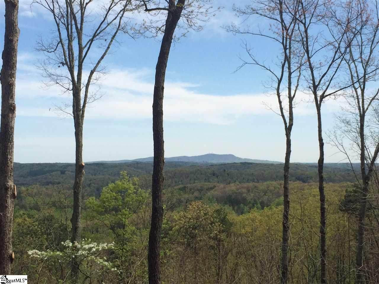 155 Cherokee Rose Trail - Photo 1