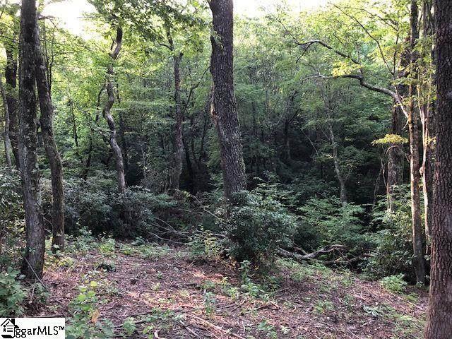 8021 Glassy Ridge Road, Landrum, SC 29356 (#1414400) :: Hamilton & Co. of Keller Williams Greenville Upstate