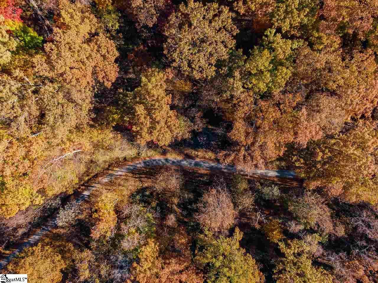 134 Glassy Falls Trail - Photo 1