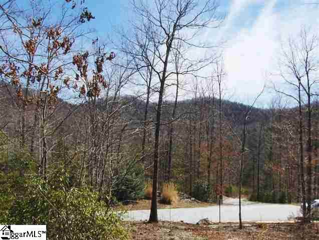 14 Elm Bend Trail, Travelers Rest, SC 29690 (#1416639) :: Modern