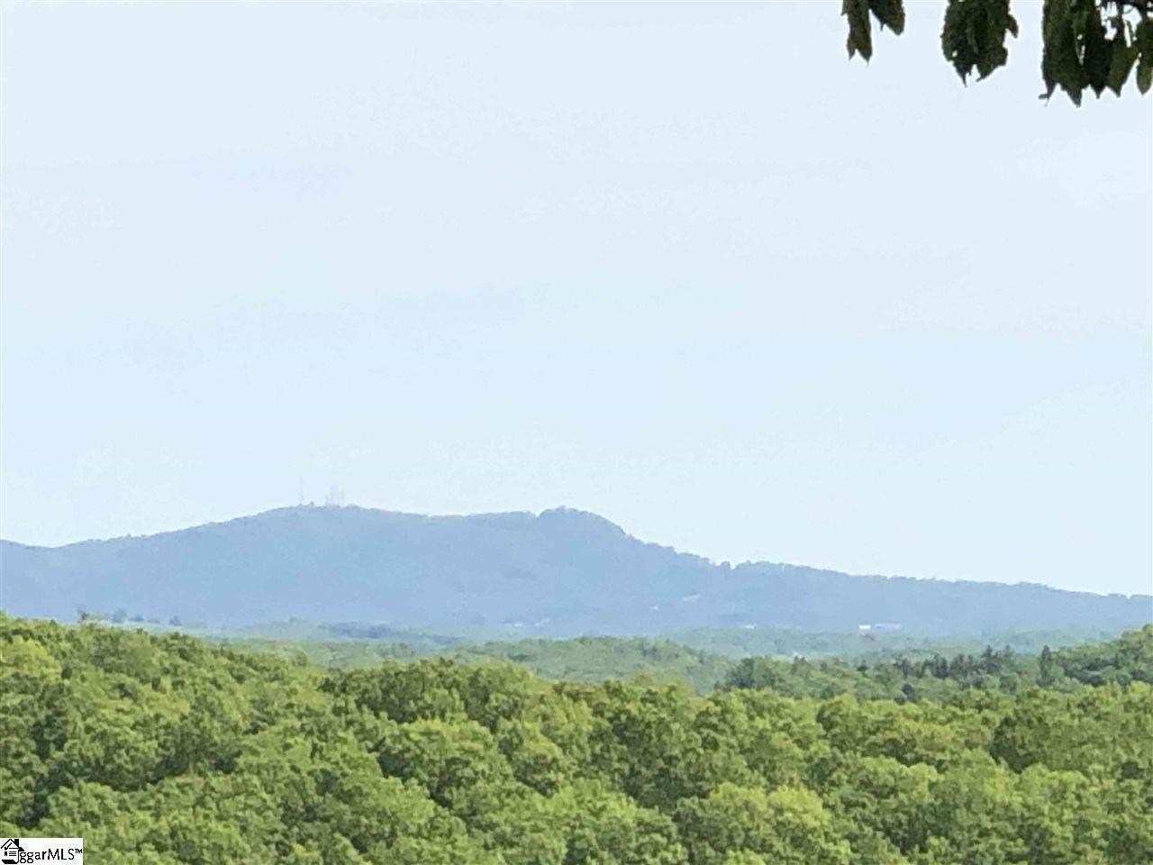 365 Blue Bonnet Trail - Photo 1