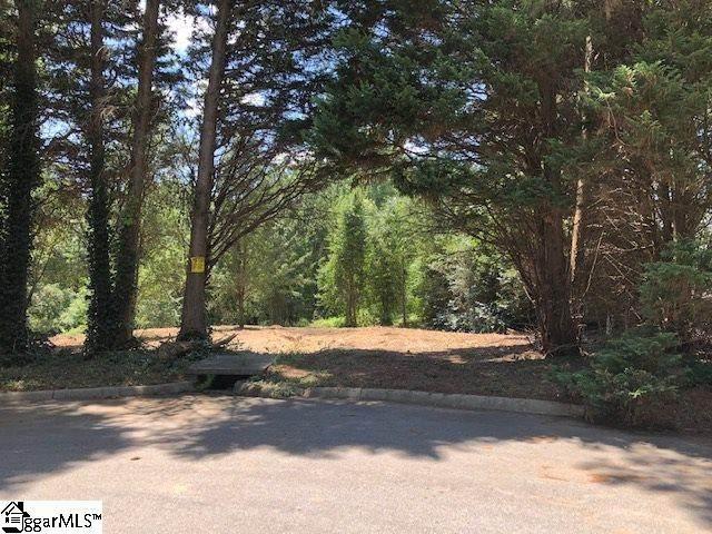 00 Ricelan Drive, Simpsonville, SC 29681 (MLS #1422435) :: Resource Realty Group