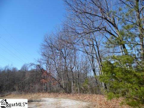 0 Lakeview Drive, Tryon, NC 28782 (#1424028) :: J. Michael Manley Team