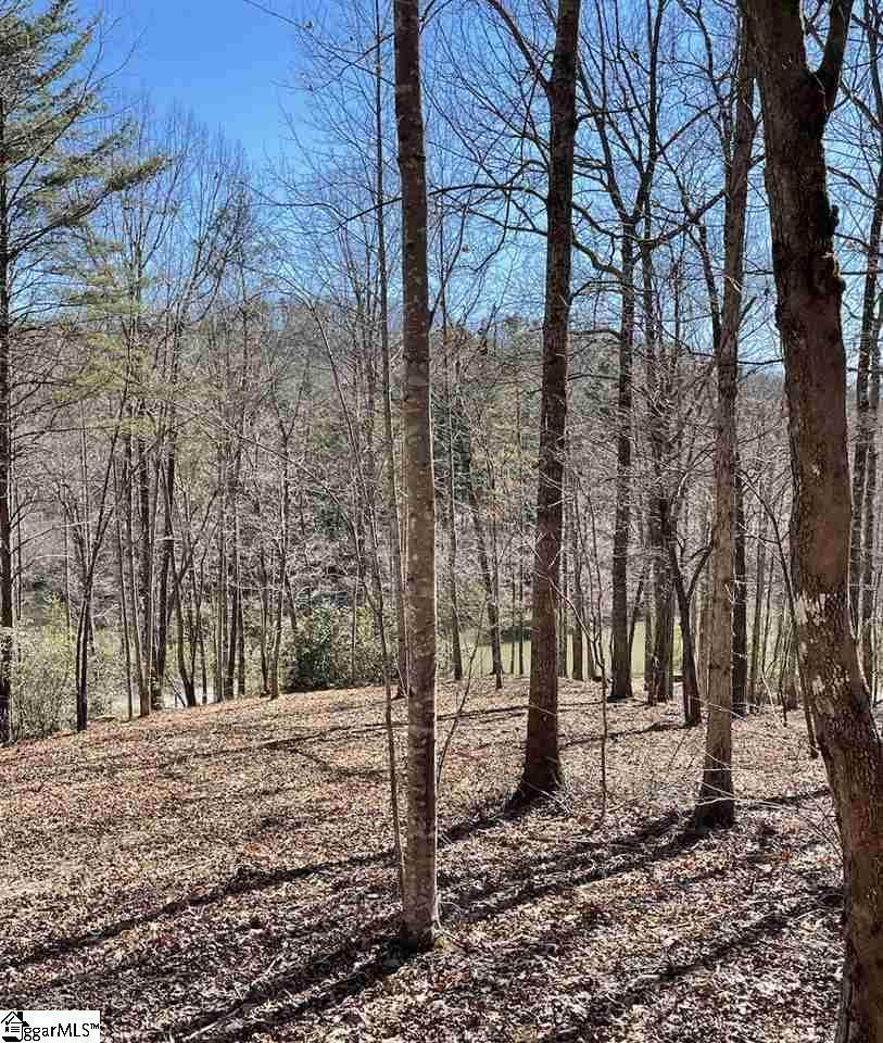 220 Tree Haven Trail - Photo 1