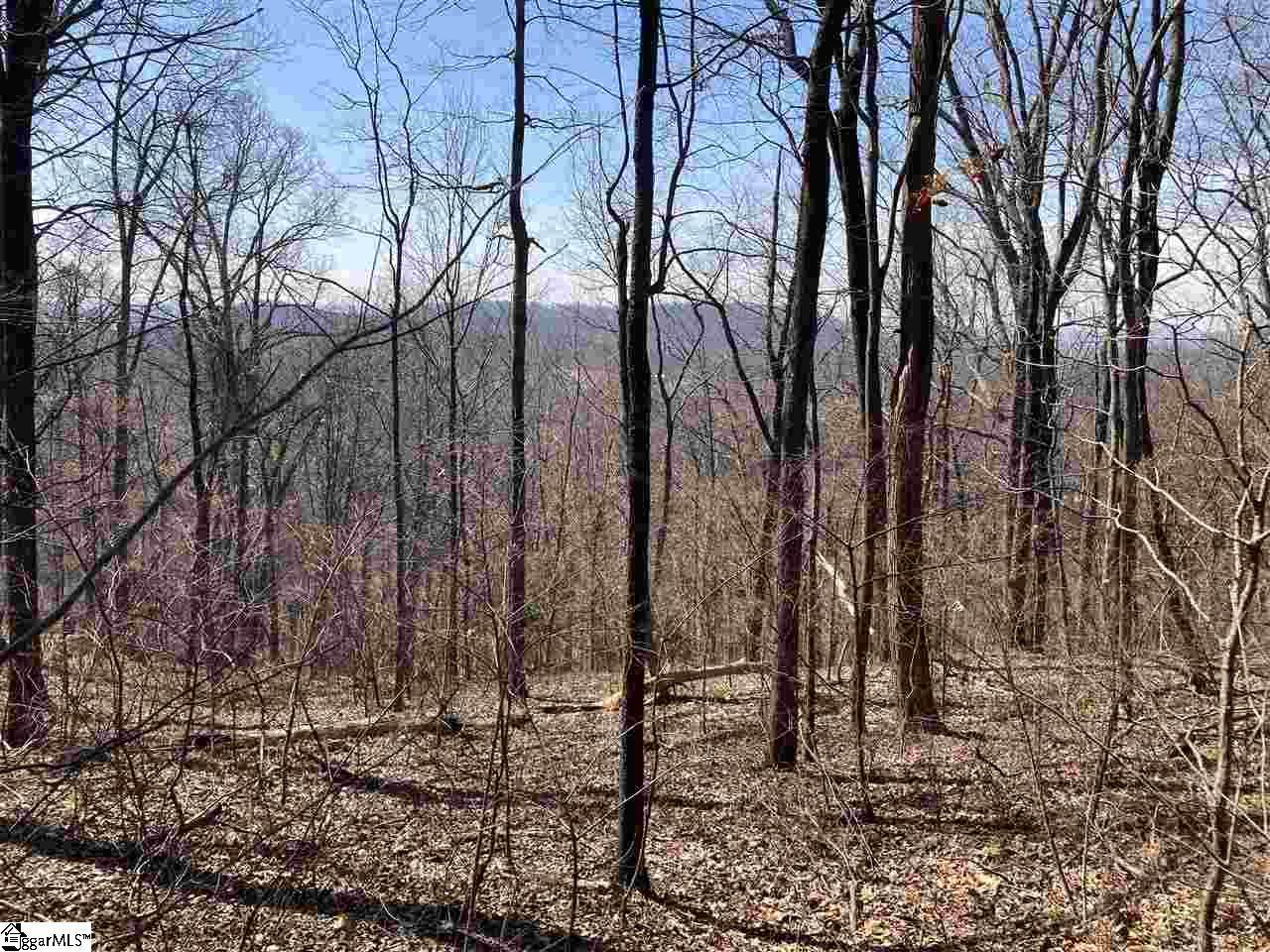 Outcrop Trail - Photo 1