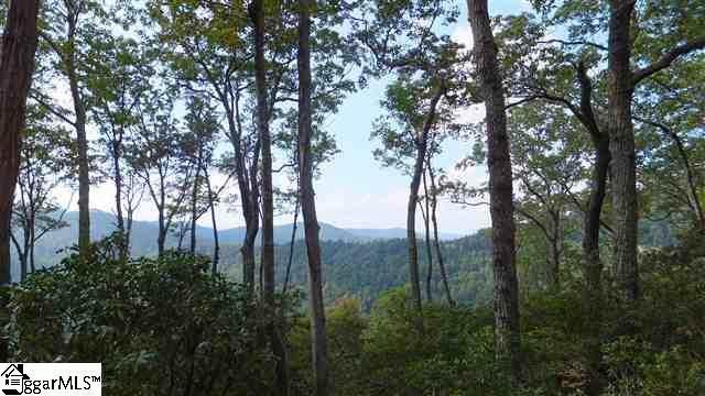 108 Fall Breeze Trail, Travelers Rest, SC 29690 (#1456631) :: Hamilton & Co. of Keller Williams Greenville Upstate