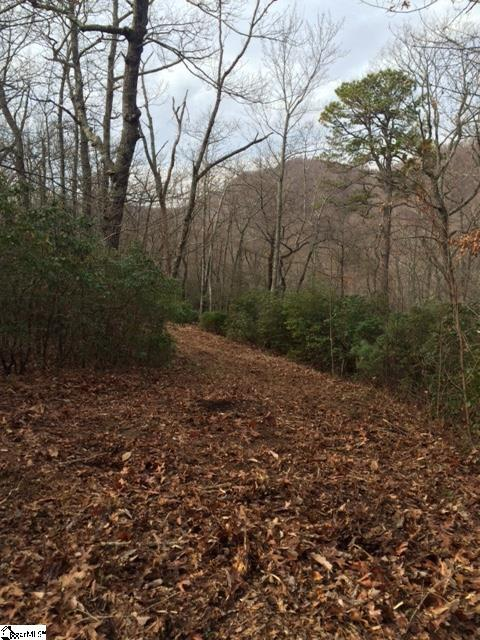 Panther Mountain Road - Photo 1