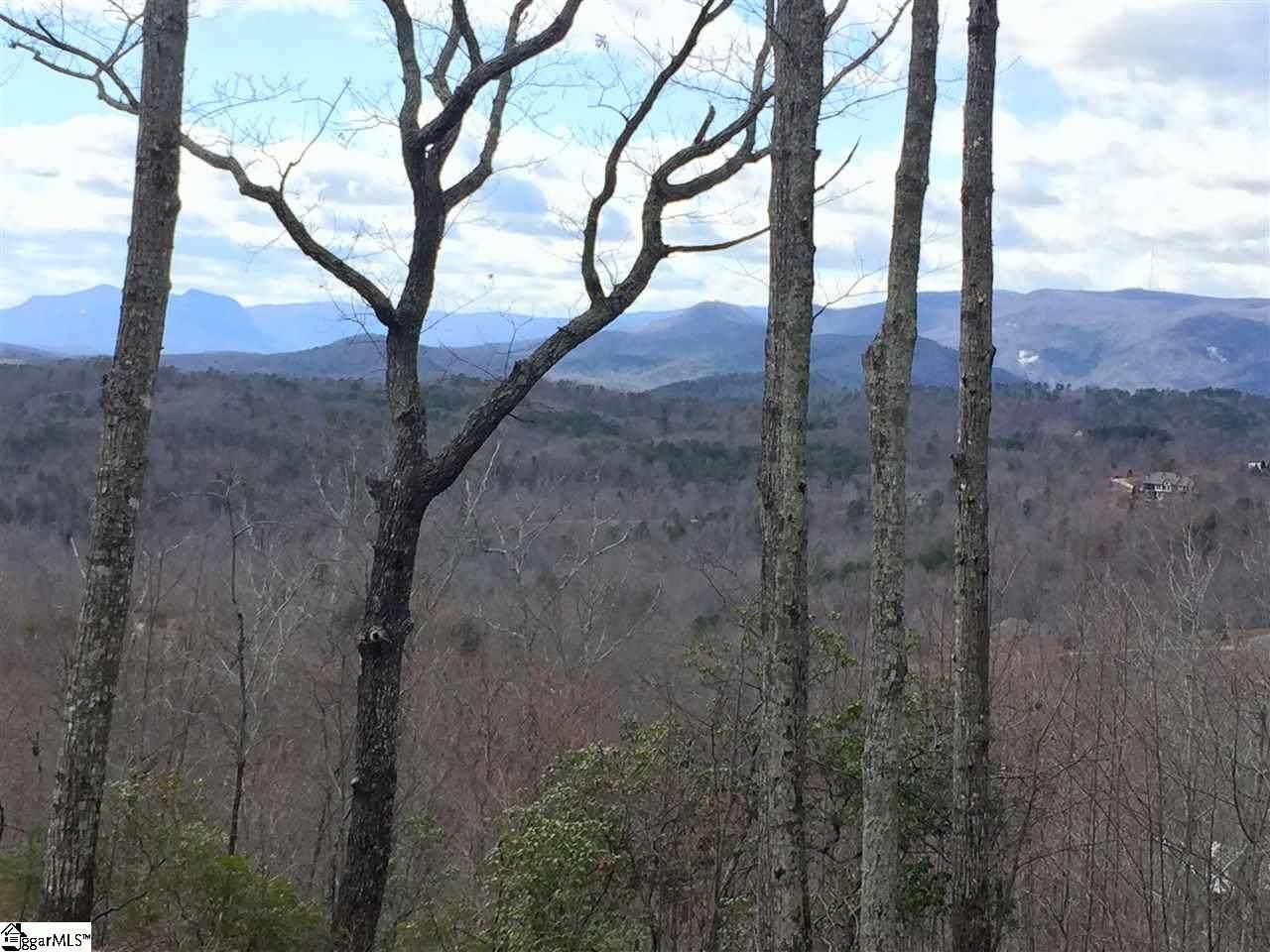 130 Cherokee Rose Trail - Photo 1