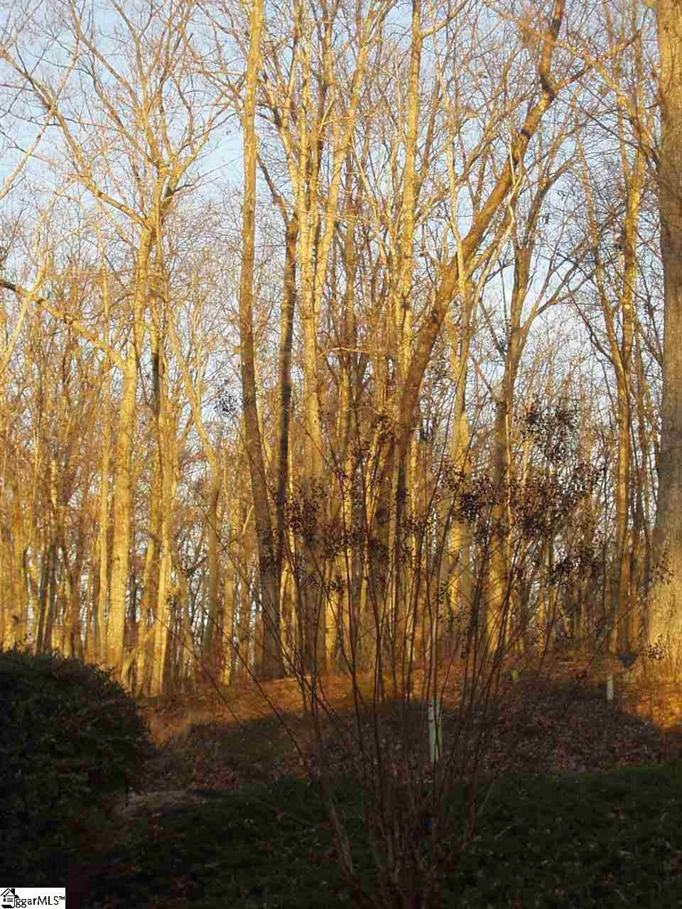 6 Rhone Valley Lane - Photo 1