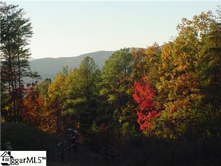 000 Jocassee Ridge Way, Salem, SC 29676 (#1336065) :: Hamilton & Co. of Keller Williams Greenville Upstate