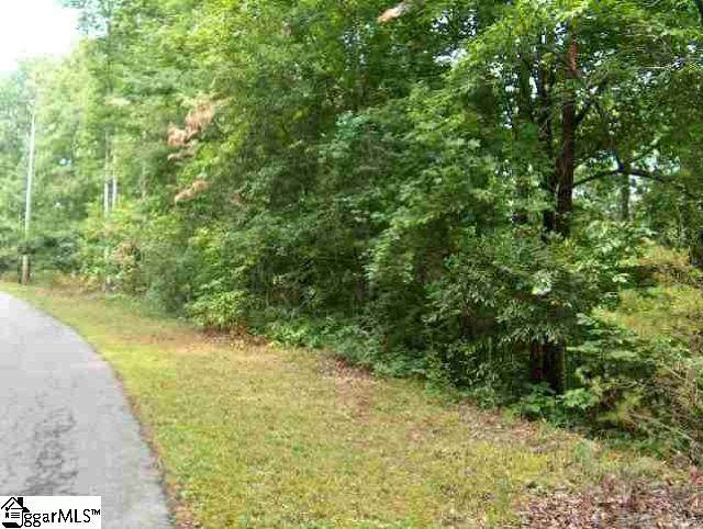 378 Gauley Falls Road, Pickens, SC 29671 (#1437479) :: Realty ONE Group Freedom