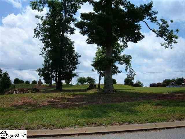100 Delphine Court, Taylors, SC 29687 (#1216754) :: Mossy Oak Properties Land and Luxury