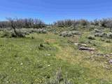 TBD Spring Creek Road - Photo 28